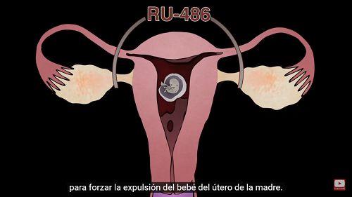 ¿Apoyas el aborto? Mira estos vídeos